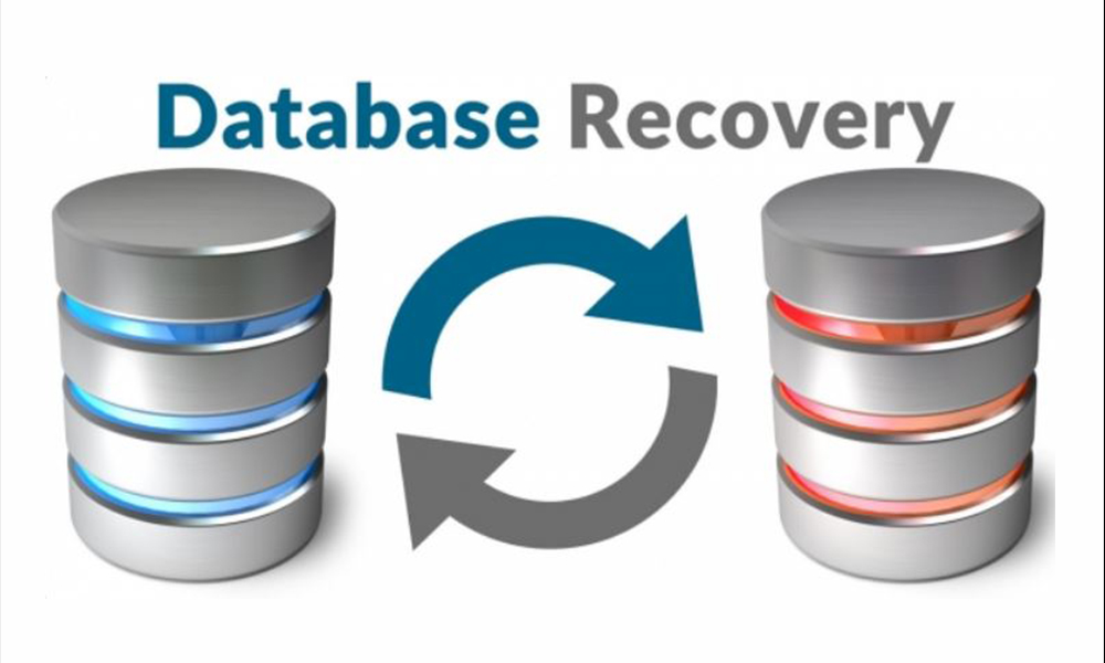 Importance of Database Recovery