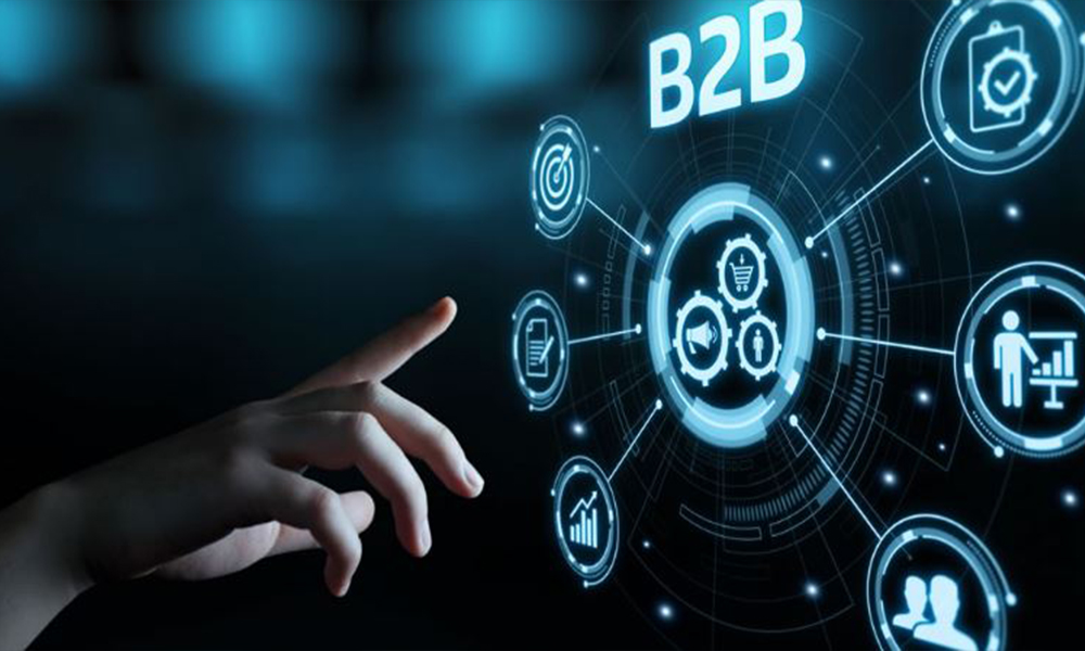 Types of B2B Transactions, and B2B Partnerships